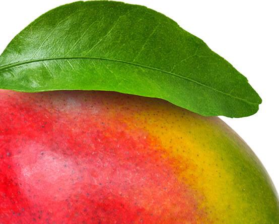 150+ tipos de frutas exóticas